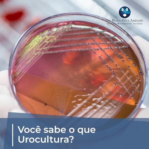 Você Sabe o Que é Urocultura?